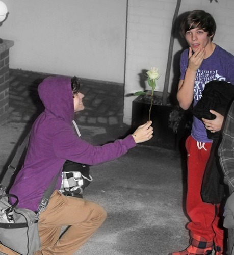 Lourry (Bromance) How Sweet Is Harry par Giving Louis A White Rose (I Wudn't Refuse) 100% Real :) x
