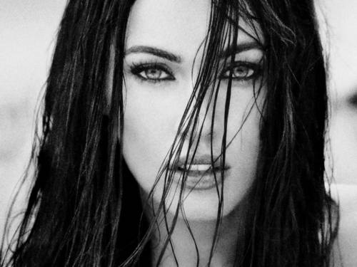 Megan Fox wallpaper with a portrait entitled Megan Fox Wallpaper