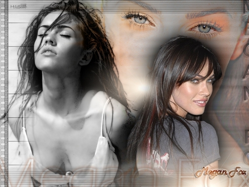 Megan Fox images Megan Fox Wallpaper HD wallpaper and background photos