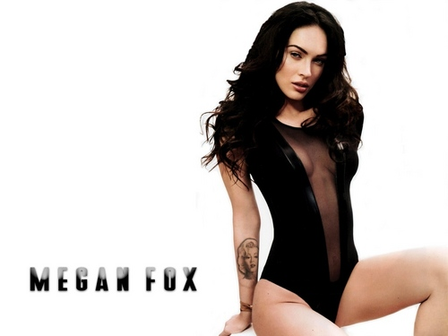 Megan rubah, fox wallpaper