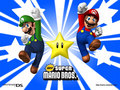 New Super Mario Bros. DS