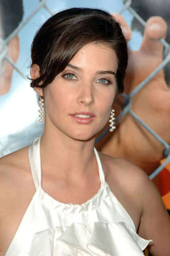 Robin Scherbatsky wallpaper with a chainlink fence entitled Robin Scherbatsky