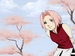 SaKuRa - naruto-women icon