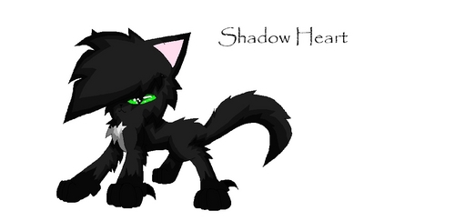 Shadow cuore