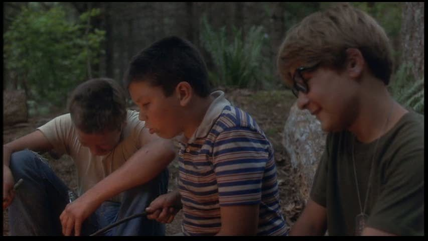 essay about river phoenix Critics consensus: stand by me is a wise,  four young friends, gordie (wil wheaton), chris (river phoenix), vern (jerry o'connell) and teddy (corey feldman) go on an adventure together to find.