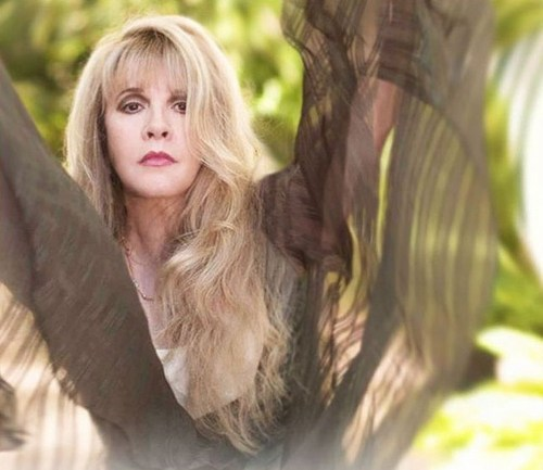 Stevie Nicks wallpaper probably containing an outerwear and a portrait entitled Stevie 2011