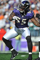 Terrell Suggs - baltimore-ravens photo