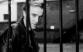 Tom Felton (from Denvers)