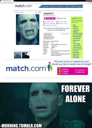 Death Eaters VS Order of the Phoenix wallpaper titled Voldemort LOLs