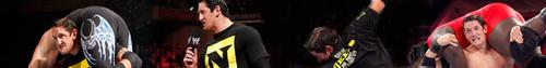 Wade Barrett - Banner
