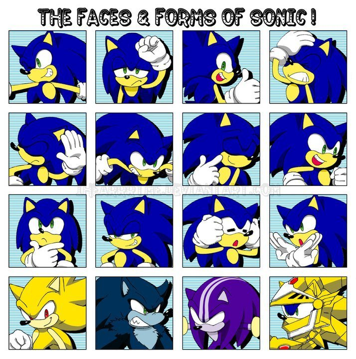 Faces And Forms Of Sonic Sonic The Hedgehog Foto 18536747 Fanpop