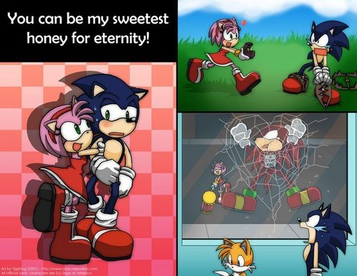 sonic and amy comic! LOL - sonic-and-amy Photo