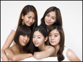 wg - wonder-girls photo