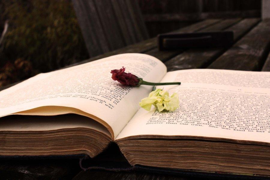 external image -He-left-me-flowers-poetry-18619666-900-600.jpg