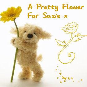A Pretty blume for Susie x