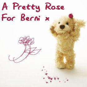 A Pretty Rose for Berni x