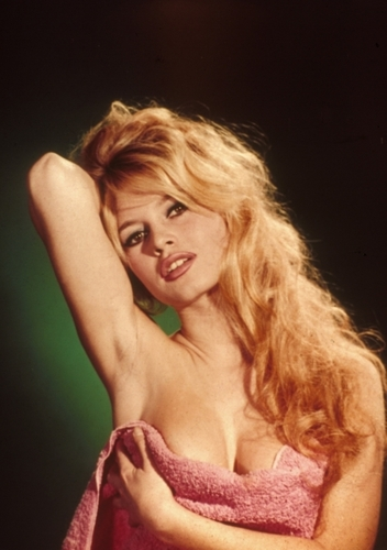 Brigitte Bardot hình nền possibly containing attractiveness, skin, and a portrait called Brigitte Bardot