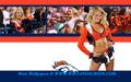 Denver Broncos Bri