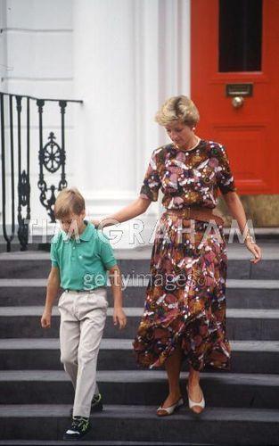 Diana And William School