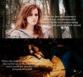 Harry Potter, Twilight - harry-potter-vs-twilight photo