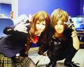IV & Shin (ViViD)