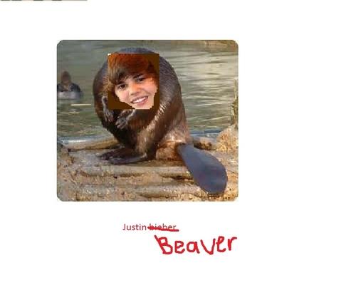 Jusin Beaver!