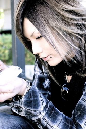 Kazuki (Screw)