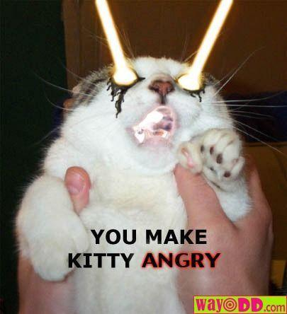 Laser Kitty!