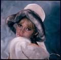 Lovely BB - brigitte-bardot photo