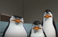 Marlene, we are not amused. - penguins-of-madagascar photo