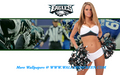 Philadelphia Eagles Danae - nfl-cheerleaders wallpaper