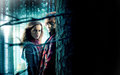 Romione - rupert-grint-and-emma-watson wallpaper