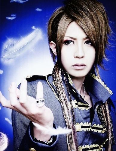Shin (ViViD)