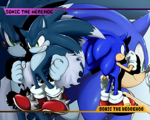 Sonic the werehog<3