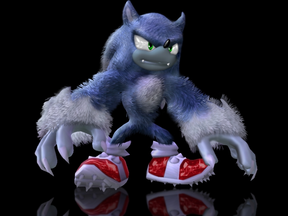 Sonic-the-werehog-sonic-the-werehog-18631798-1000-750.jpg