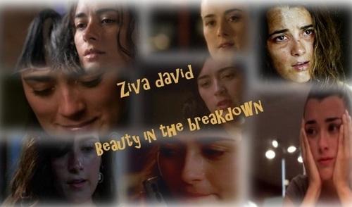 Ziva Beauty in the Breakdown