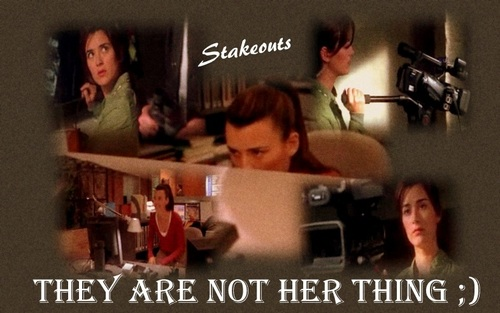 Ziva Stakeout