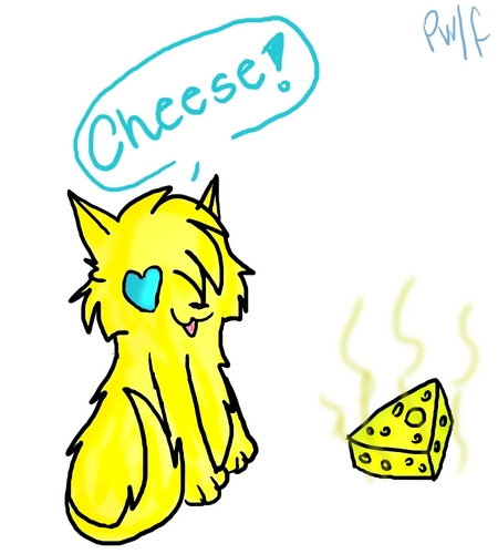 fatty Cheeseface and her cheese