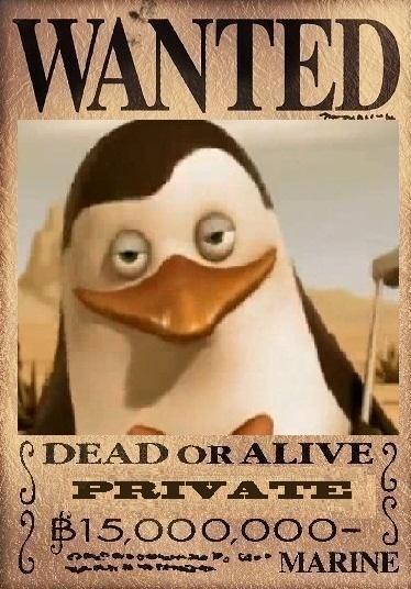 private's dead या alive poster