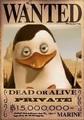 private's dead o alive poster