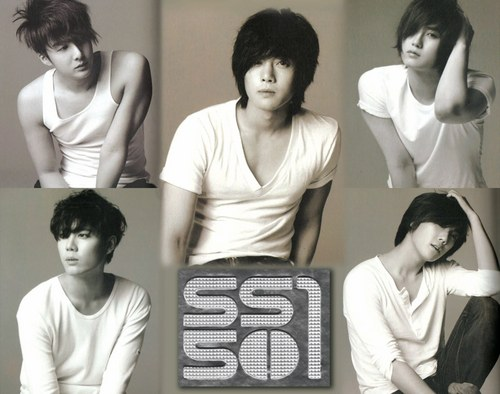 SS501 wallpaper containing a sign entitled ss501