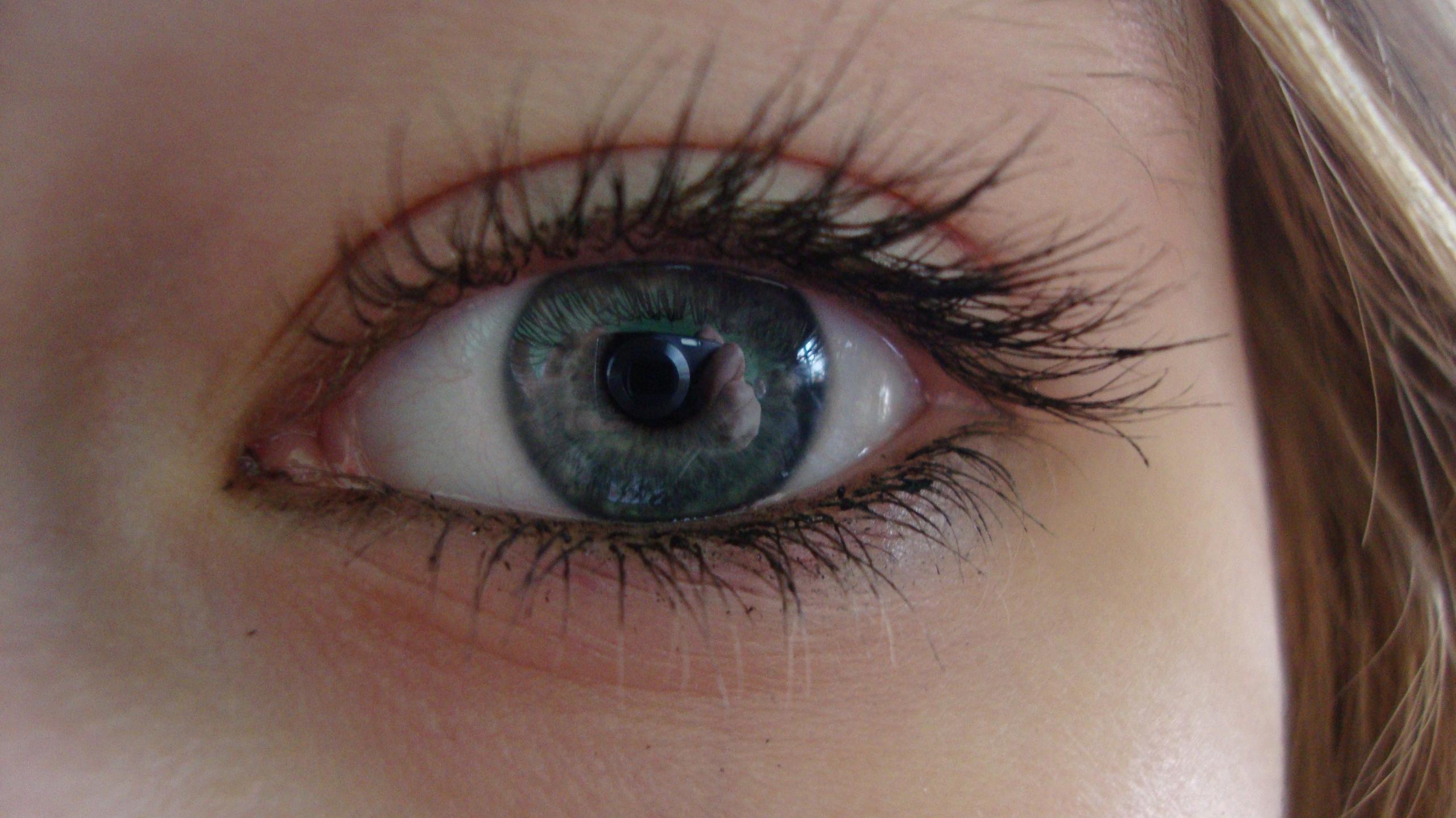 Eyes Photo  18744591  ...