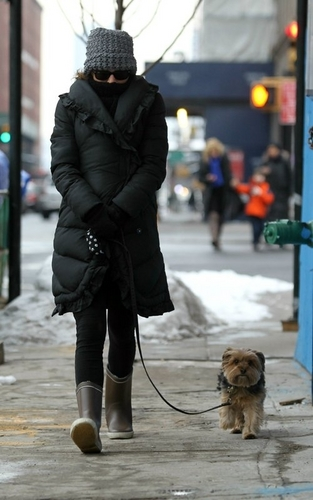 A chilly walk with Whiz in New York City