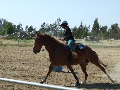 Barrel Racing With Twinkie