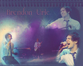 Brendon 2011♡ - panic-at-the-disco wallpaper