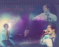 Brendon 2011♡ - panic-at-the-disco wallpaper