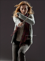 Deathly Hallows - hermione-granger photo