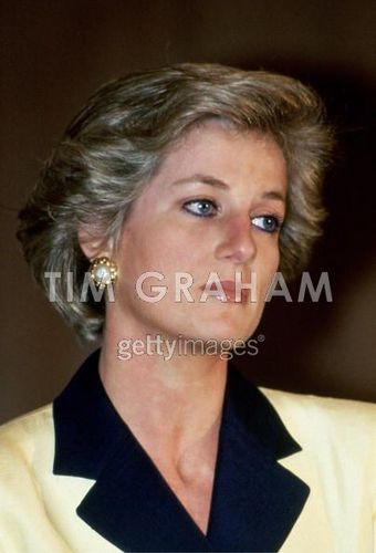Diana At Family Of The साल Awards