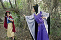 Evil Queen - disney-villains photo