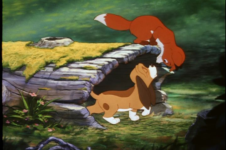 Pics Photos - The Fox And The Hound And The Cat Image